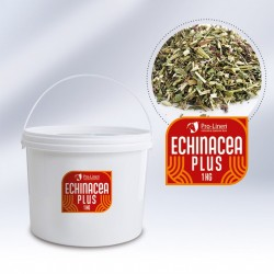 Pro-Linen Echinacea