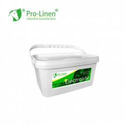 Pro-Linen Electrolyte 2 KG - elektrolity dla koni